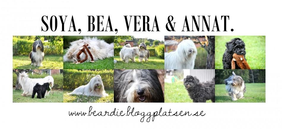 Soya, Bea, Vera & annat.